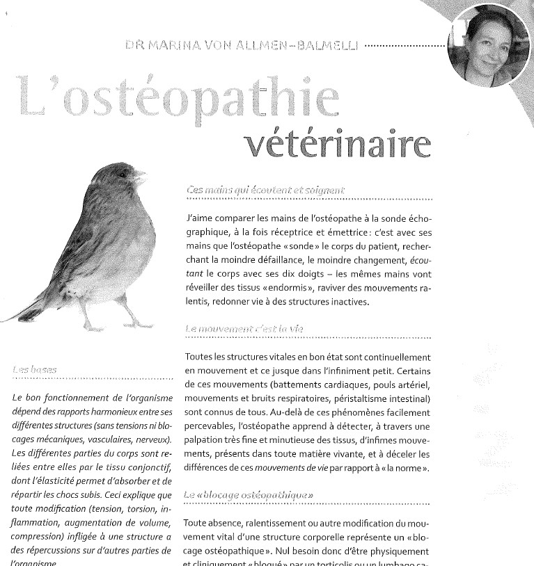 osteopathie veterinaire