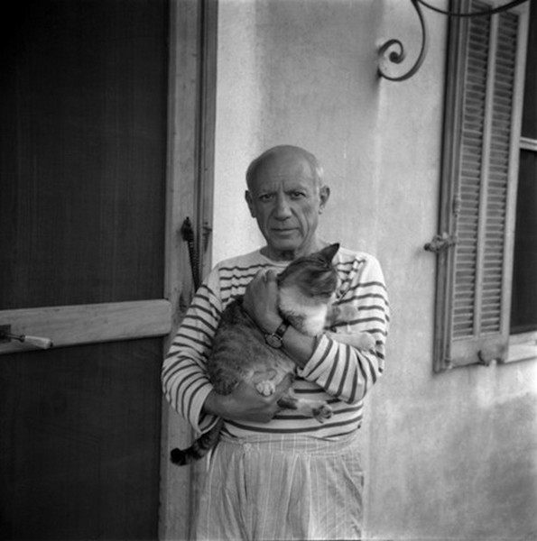chat-Pablo-Picasso